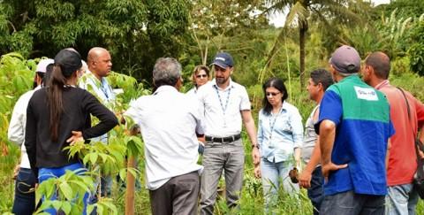 Recuperação de manancial: Deso planta mudas na cidade de Malhador (SE)