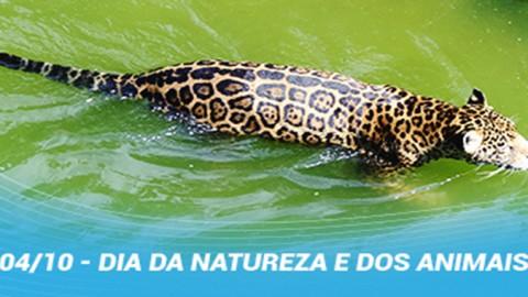 Caerr reforça a importância dos cuidados com os mananciais de Roraima
