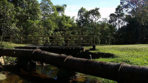 Mananciais da Serram, no Paraná, estão abertos para visitas neste fim de semana