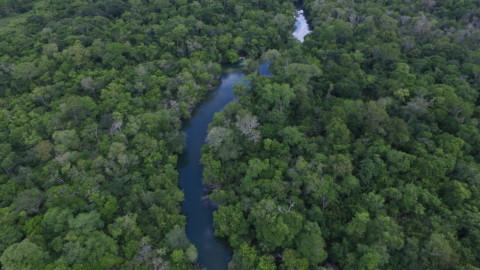 No Dia Mundial do Meio Ambiente, Sanesul mantém o compromisso de cuidar da natureza