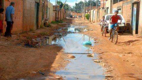 Brasil é um dos países em que a esquistossomose permanece endêmica