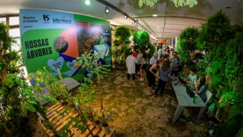 Sabesp adota mais de 15 mil árvores em participação no Green Nation