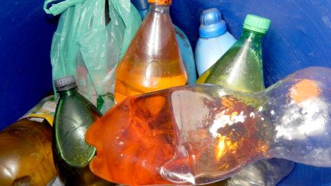Na semana do Meio Ambiente, Sanepar abre espaço para coleta de resíduo