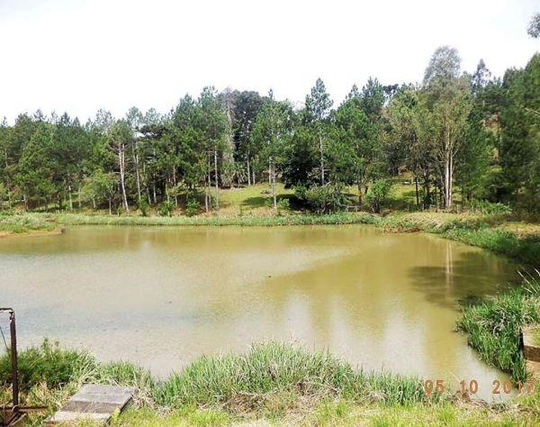 Casan prevê R$ 120 mil para limpeza da reserva de captação de água de Catanduvas (SC)
