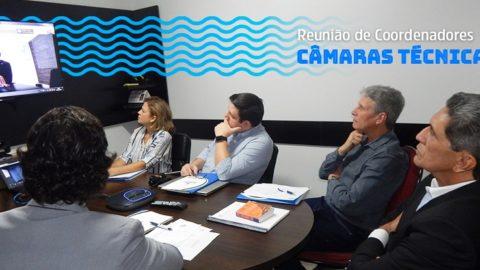 Coordenadores das Câmaras Técnicas se reúnem para o planejamento de 2020