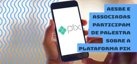 Aesbe e associadas participam de palestra sobre a Plataforma Pix