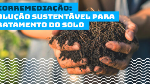 Biorremediação é técnica promissora para tratamento do solo e água, tendo bastante expansão no país
